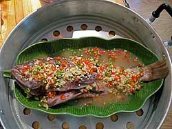 Steamed Fish, Sour & Hot
