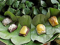 Sticky Rice Snacks