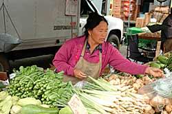 Oakland Farmer's Market Vendor