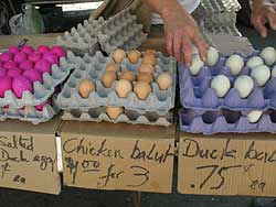 Balut for Sale