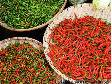 Fresh Thai Chillies