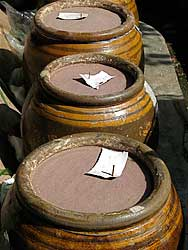 Shrimp paste in earthenware jars