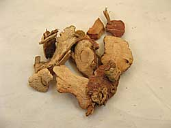 Dried Galanga