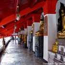 Walkway with Buddha Statues thumbnail