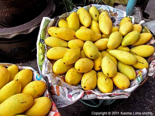Yellow Mangoes