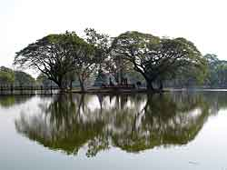 Sukhothai Reflection