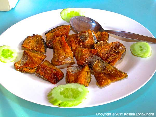 Fried Fish 6
