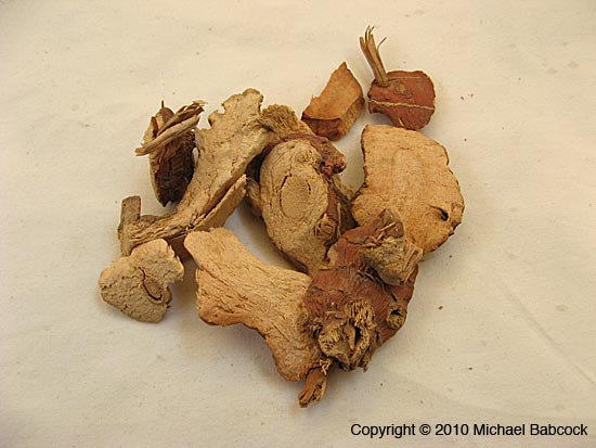 Dried Galanga Root