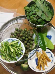 Green Curry Ingredients
