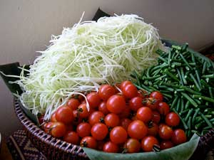 Green Papaya Salad Ingredients