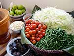 Ingredients for green papaya salad