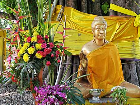 Buddha statue with flcowers
