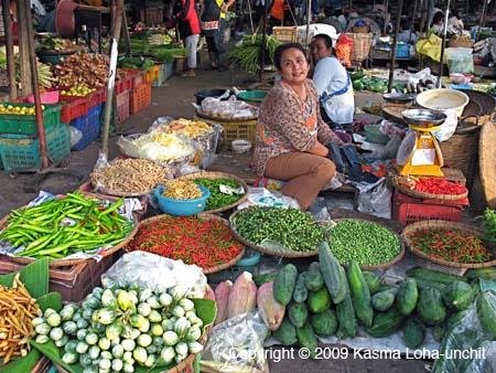 Pilot Project: Unprocessed Fruits & Vegetables